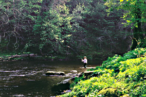 Bovey Castle - Fishing on the Dart